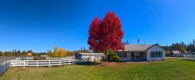 Josephine County Single Family Home For Sale: 2429 Robinson Road