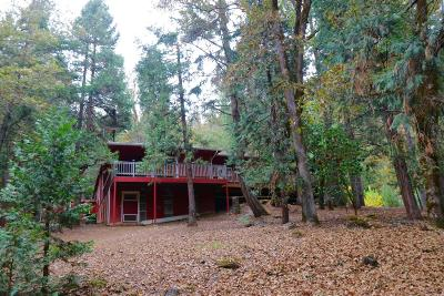 Wolf Creek Single Family Home For Sale: 4172 Placer Road