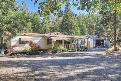 Grants Pass Single Family Home For Sale: 905 Murphy Creek Road