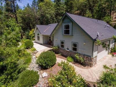 Grants Pass Single Family Home For Sale: 118 Mallory Heights Drive