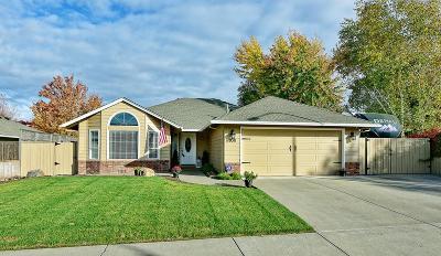 Medford Single Family Home For Sale: 3311 Alameda Street