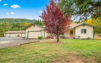 Grants Pass Single Family Home For Sale: 142 Felkner Road