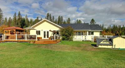 Merlin, Sunny Valley, Wimer, Rogue River, Wilderville, Grants Pass, Hugo, Murphy, Wolf Creek Single Family Home For Sale: 8383 E Evans Creek Road