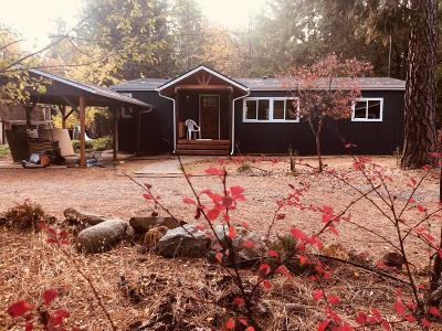 Rogue River Single Family Home For Sale: 7800 West Evans Creek Road