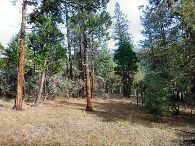 Residential Lots & Land For Sale: 704 Evergreen Drive