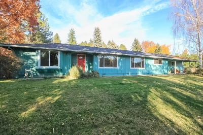 Medford Single Family Home For Sale: 1423 Angelcrest Drive