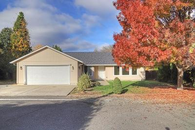 Merlin, Sunny Valley, Wimer, Rogue River, Wilderville, Grants Pass, Murphy, Wolf Creek, Hugo, Wonder Single Family Home For Sale: 245 W Evans Creek Road