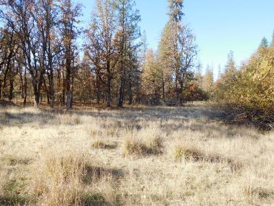 Josephine County Residential Lots & Land For Sale: 220 Lamont Way