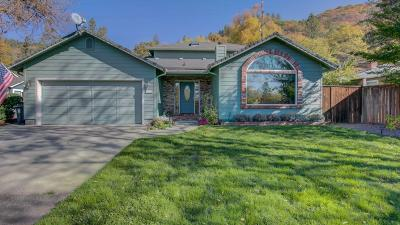 Grants Pass Single Family Home For Sale: 1675 NE Terrace Drive