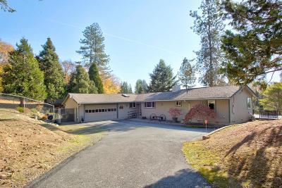 Grants Pass Single Family Home For Sale: 163 Buckskin Drive