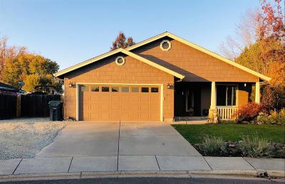 Single Family Home For Sale: 335 Applewood Drive