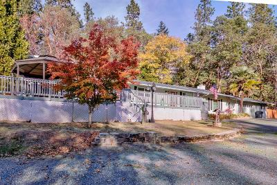 Single Family Home For Sale: 1608 E E Jones Creek Road