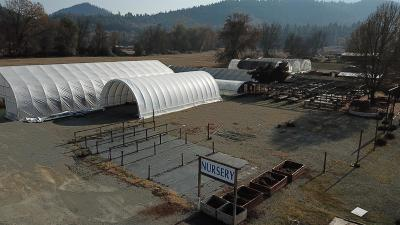 Josephine County Single Family Home For Sale: 6775 Williams Highway