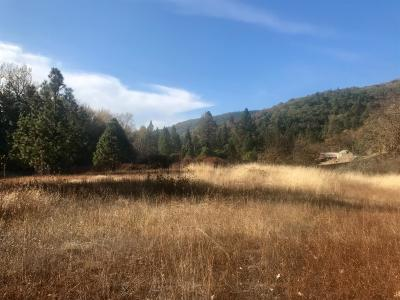 Residential Lots & Land For Sale: 3297 Hwy 238