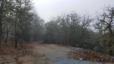Grants Pass OR Residential Lots & Land For Sale: $199,000