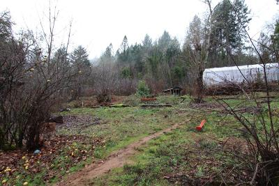 Josephine County Residential Lots & Land For Sale: 3929 Leland Road