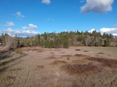 Merlin, Sunny Valley, Wimer, Rogue River, Wilderville, Grants Pass Residential Lots & Land For Sale: 5802 Jerome Prairie Road