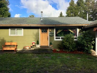 Grants Pass Single Family Home For Sale: 1820 Fruitdale Drive