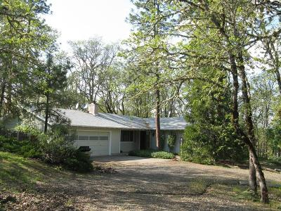 Eagle Point Single Family Home For Sale: 355 Ironwood Drive