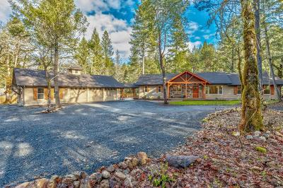 Grants Pass Single Family Home For Sale: 180 Daleo Drive