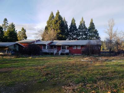 Josephine County Single Family Home For Sale: 239 Dick George Road