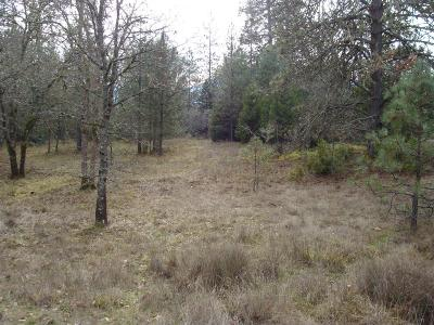 Residential Lots & Land For Sale: 5027 New Hope Road
