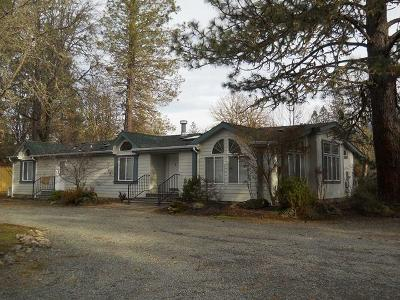 Rogue River Single Family Home For Sale: 270 Queens Branch Road