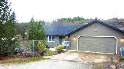 Shady Cove Single Family Home For Sale: 117 Kathleen Terrace