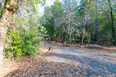Merlin, Sunny Valley, Wimer, Rogue River, Wilderville, Grants Pass Residential Lots & Land For Sale: West Evans Creek Road