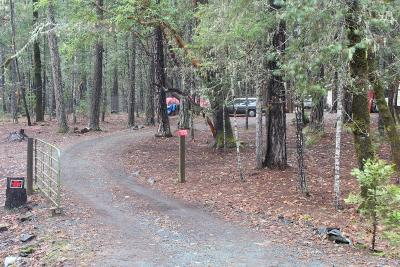 Merlin, Sunny Valley, Wimer, Rogue River, Wilderville, Grants Pass Residential Lots & Land For Sale: 1238 Pickett Creek Road