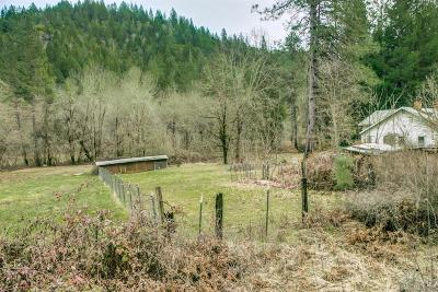 Rogue River Single Family Home For Sale: 4994 W Evans Creek Road