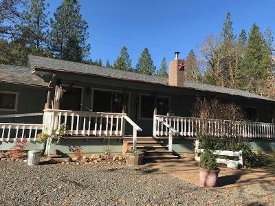 Jackson County, Josephine County Single Family Home For Sale: 4821 E Evans Creek Road