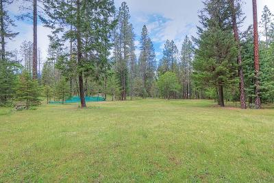 Merlin, Sunny Valley, Wimer, Rogue River, Wilderville, Grants Pass Residential Lots & Land For Sale: Azalea Drive