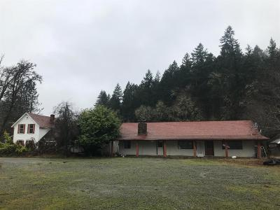 Wilderville Single Family Home For Sale: 8940 Redwood Highway