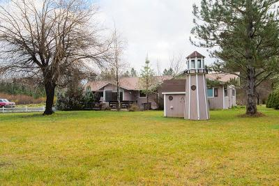 Rogue River Single Family Home For Sale: 805 Minthorne Road
