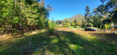 Residential Lots & Land For Sale: 3 Left Fork Humbug Creek Road