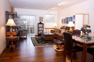Ashland Condo/Townhouse For Sale: 910 Mountain Meadows Circle