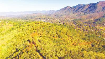 Grants Pass Residential Lots & Land For Sale: 750 Homewood Road