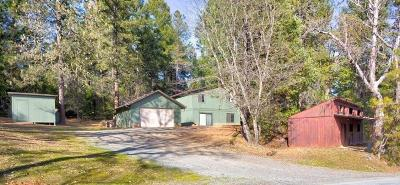 Grants Pass Single Family Home For Sale: 250 Tunnel Creek Road