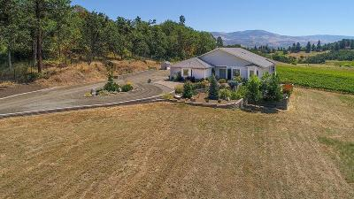 Medford Single Family Home For Sale: 3578 Pioneer Road