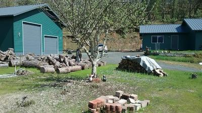 Grants Pass OR Single Family Home For Sale: $420,000