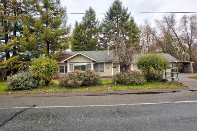 Grants Pass Single Family Home For Sale: 1540 Fruitdale Drive