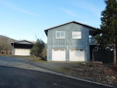 Grants Pass Single Family Home For Sale: 604 NW Scenic Drive
