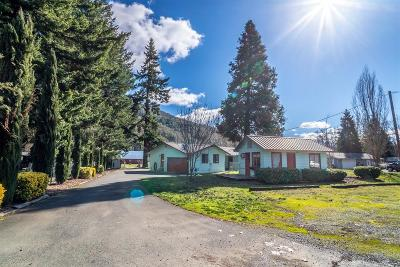 Jackson County, Josephine County Single Family Home For Sale: 1333 Rogue River Highway