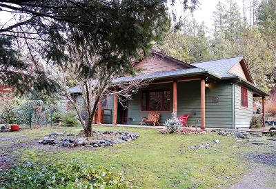 Gold Hill Single Family Home For Sale: 4362 Sardine Creek R Fork Road