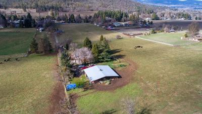 Medford Single Family Home For Sale: 3173 Griffin Creek Road