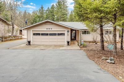 Merlin, Sunny Valley, Wimer, Rogue River, Wilderville, Grants Pass, Hugo, Murphy, Wolf Creek Single Family Home For Sale: 360 Norwood Lane