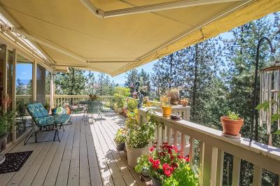 Ashland Single Family Home For Sale: 836 Morton Street