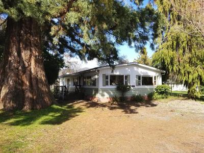 Grants Pass Single Family Home For Sale: 1708 Fruitdale Drive