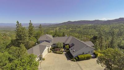 Single Family Home For Sale: 7384 Pine Ridge Drive